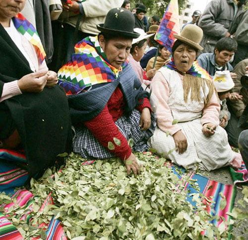 La sagrada hoja de coca usada en ritos andinos