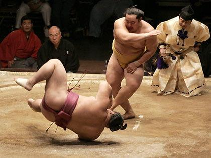 Sumo Sumo-i