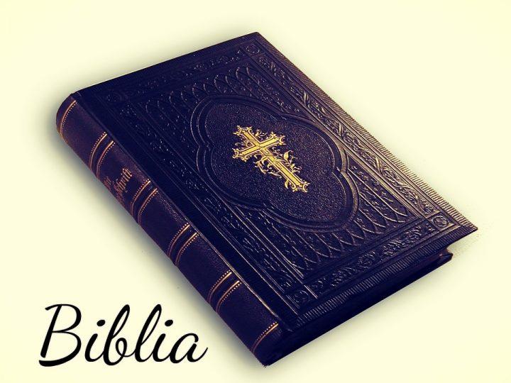 Significado de la palabra biblia